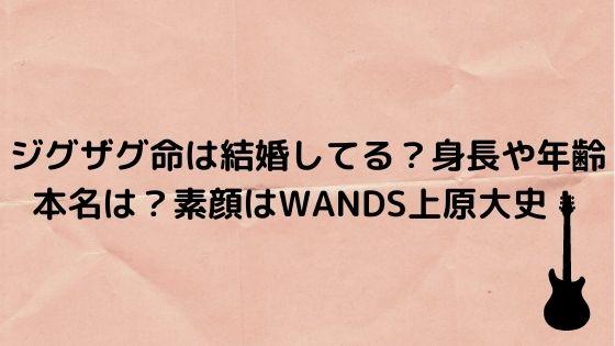 ジグザグ wands